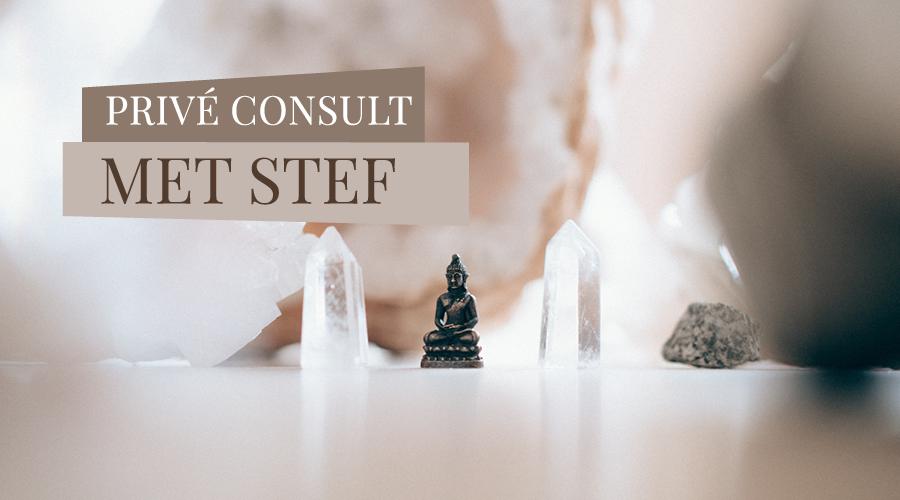 medium-stef-consult
